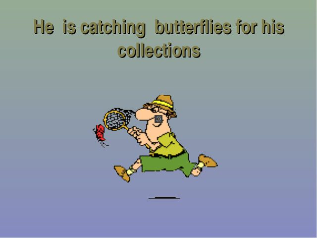 He is catching butterflies for his collections