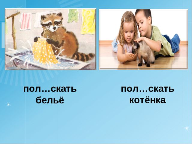 пол…скать бельё пол…скать котёнка