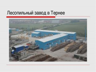 Лесопильный завод в Тернее