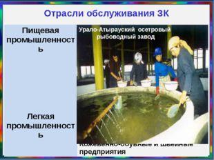 Отрасли обслуживания ЗК Урало-Атырауский осетровый рыбоводный завод Пищевая п