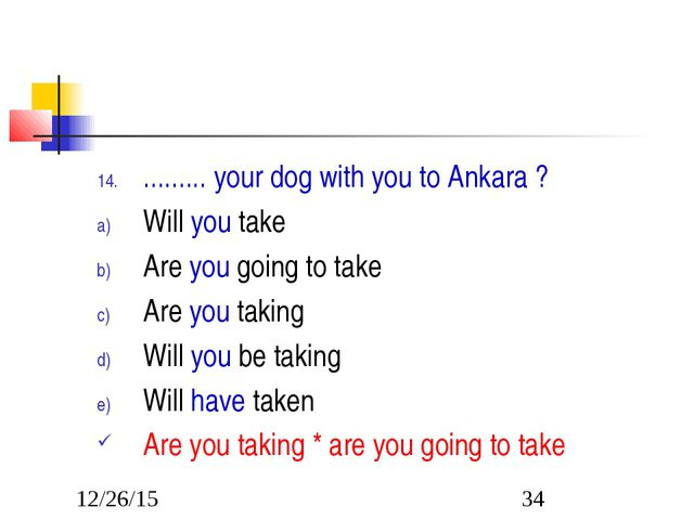 ......... your dog with you to Ankara ? Will you take Are you going to take A...