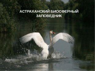 АСТРАХАНСКИЙ АСТРАХАНСКИЙ БИОСФЕРНЫЙ ЗАПОВЕДНИК