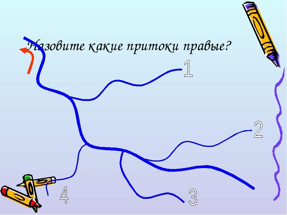 Назовите какие притоки правые?
