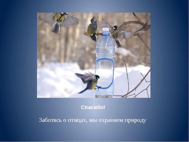 Спасибо! Заботясь о птицах, мы охраняем природу
