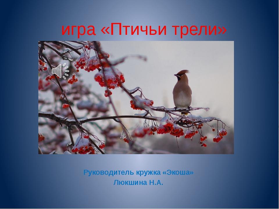игра «Птичьи трели» Руководитель кружка «Экоша» Люкшина Н.А.