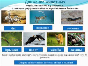 Движение животных Определите способы передвижения. С помощью каких приспособл