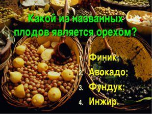 Какой из названных плодов является орехом? Финик; Авокадо; Фундук; Инжир.