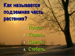 Как называется подземная часть растения? Почка; Корень; Цветок; Стебель.