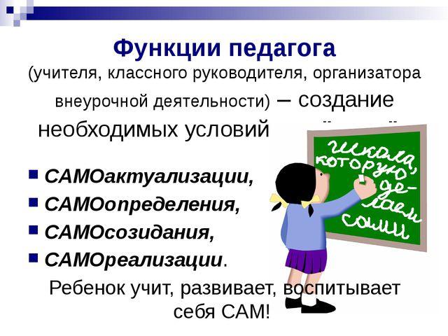 Функции педагога (учителя, классного руководителя, организатора внеурочной де...