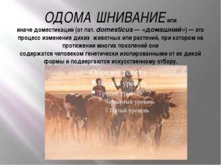 ОДОМА́ШНИВАНИЕили иначедоместикация(от лат.domesticus—«домашний»)— это