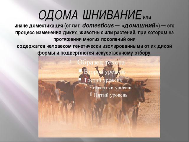 ОДОМА́ШНИВАНИЕили иначедоместикация(от лат.domesticus—«домашний»)— это...