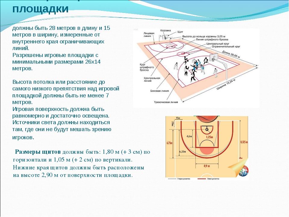 Размеры игровой площадки должны быть 28 метров в длину и 15 метров в ширину,...