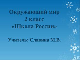 Окружающий мир 2 класс «Школа России» Учитель: Славина М.В.