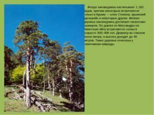 Флора заповедника насчитывает 1.165 видов, причем некоторые встречаются толь