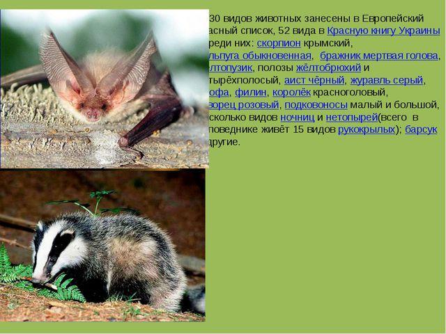 30 видов животных занесены в Европейский красный список, 52 вида в Красную к...