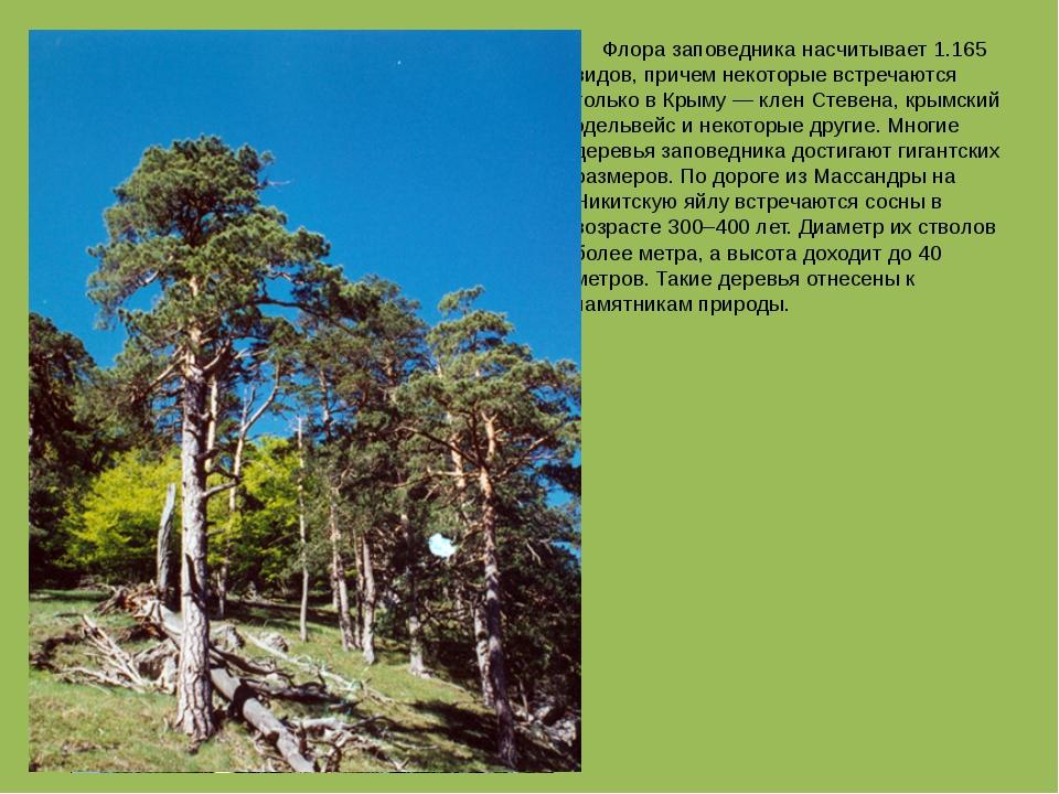 Флора заповедника насчитывает 1.165 видов, причем некоторые встречаются толь...