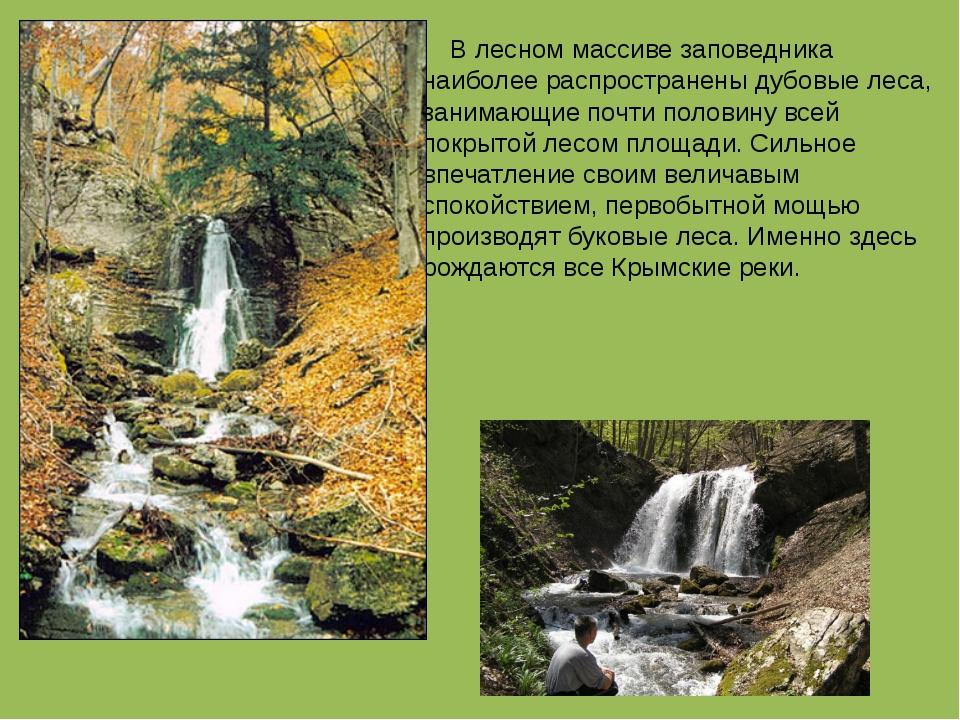В лесном массиве заповедника наиболее распространены дубовые леса, занимающи...