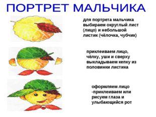 для портрета мальчика выбираем округлый лист (лицо) и небольшой листик (чёлоч