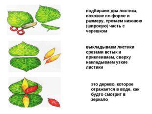 подбираем два листика, похожие по форме и размеру, срезаем нижнюю (широкую) ч