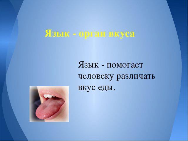 Язык - орган вкуса Язык - помогает человеку различать вкус еды.