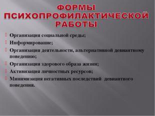 Организация социальной среды; Информирование; Организация деятельности, альте