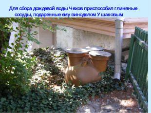 Для сбора дождевой воды Чехов приспособил глиняные сосуды, подаренные ему вин