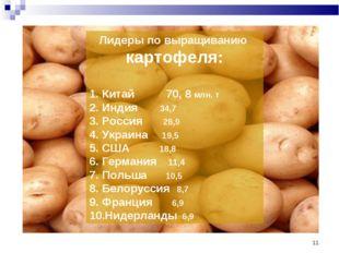 * Лидеры по выращиванию картофеля: Китай 70, 8 млн. т Индия 34,7 Россия 28,9