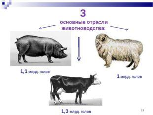 * 3 основные отрасли животноводства: 1,3 млрд. голов 1,1 млрд. голов 1 млрд.