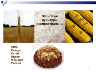 * США Канада Китай Индия Франция Россия Зерновые культуры распространены