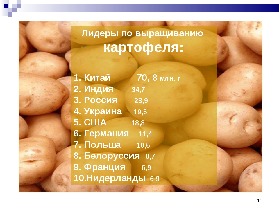* Лидеры по выращиванию картофеля: Китай 70, 8 млн. т Индия 34,7 Россия 28,9...