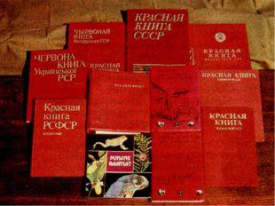 Что такое Международная Красная книга? Информационный документ-список — описа