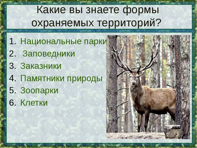 Какие вы знаете формы охраняемых территорий? Национальные парки Заповедники З...