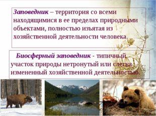 Заповедник – территория со всеми находящимися в ее пределах природными объект