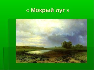 « Мокрый луг »