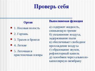 Проверь себя Орган 1. Носовая полость 2. Гортань 3. Трахея и бронхи 4. Легкие