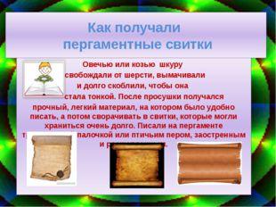 Как получали пергаментные свитки Овечью или козью шкуру освобождали от шерсти