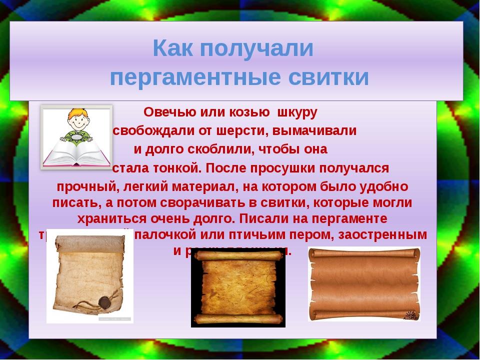 Как получали пергаментные свитки Овечью или козью шкуру освобождали от шерсти...