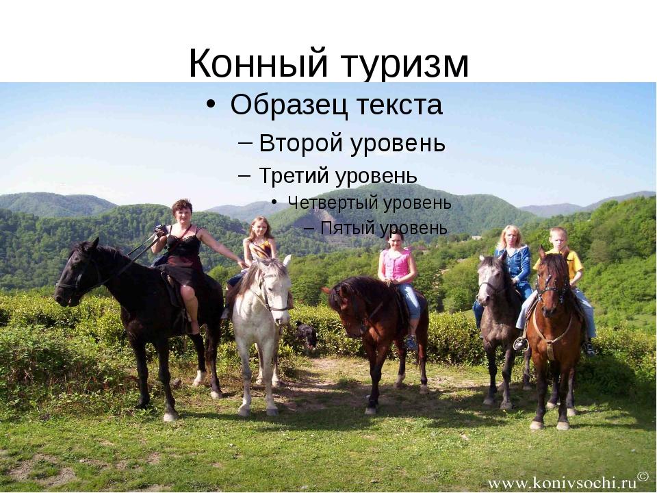 Конный туризм