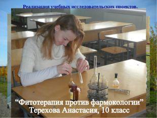 Реализация учебных исследовательских проектов. «Грибная поляна» Амосова Яна,