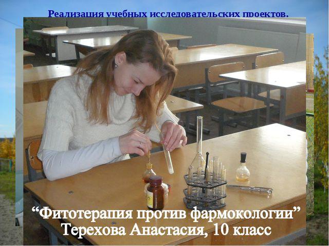 Реализация учебных исследовательских проектов. «Грибная поляна» Амосова Яна,...