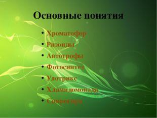 Основные понятия Хроматофор Ризоиды Автотрофы Фотосинтез Улотрикс Хламидомона