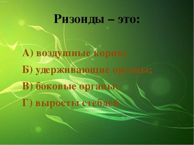 Ризоиды – это: А) воздушные корни; Б) удерживающие органы; В) боковые органы;...