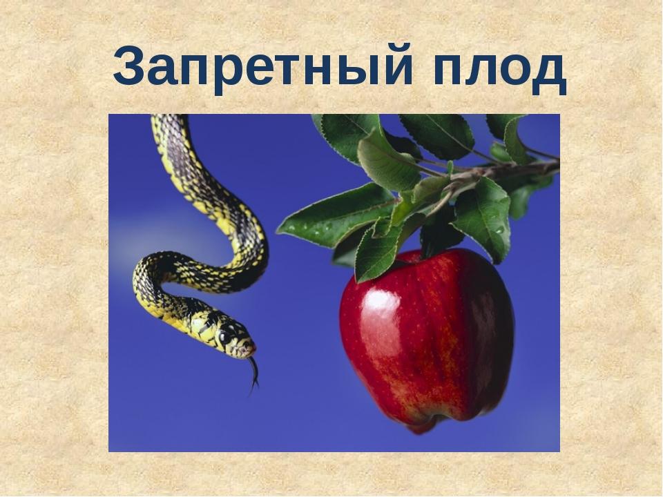 Запретный плод