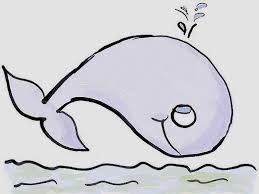 кит1.jpg