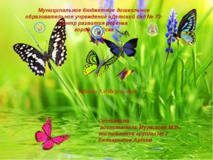 Бабочки Алтайского края Составили: воспитатель Мурашова М.В., воспитанник гру