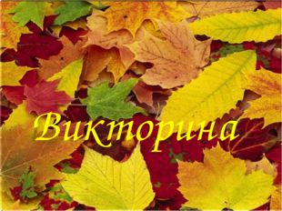 Викторина * http://aida.ucoz.ru * Викторина http://aida.ucoz.ru