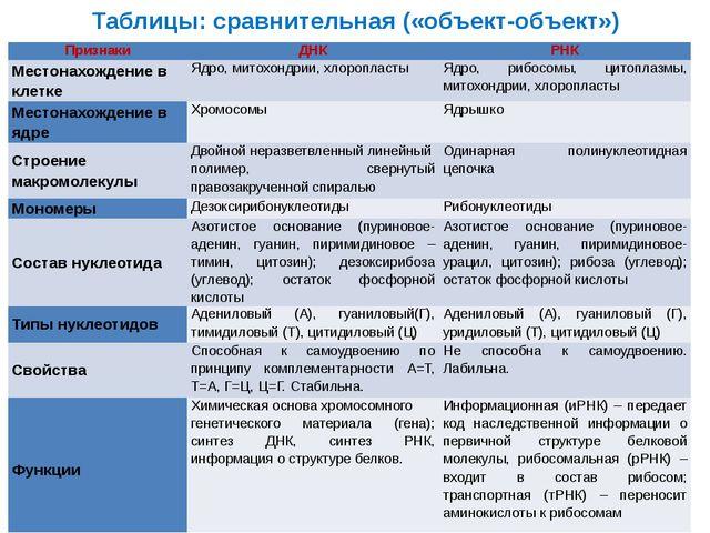 Таблицы: сравнительная («объект-объект») Признаки ДНК РНК Местонахождение в к...