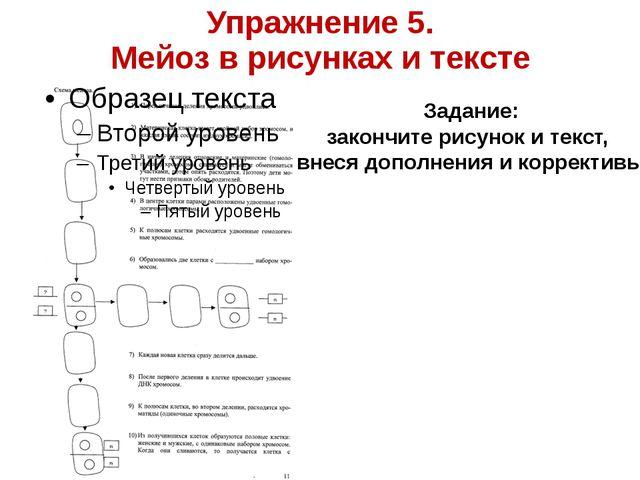 Упражнение 5. Мейоз в рисунках и тексте Задание: закончите рисунок и текст, в...
