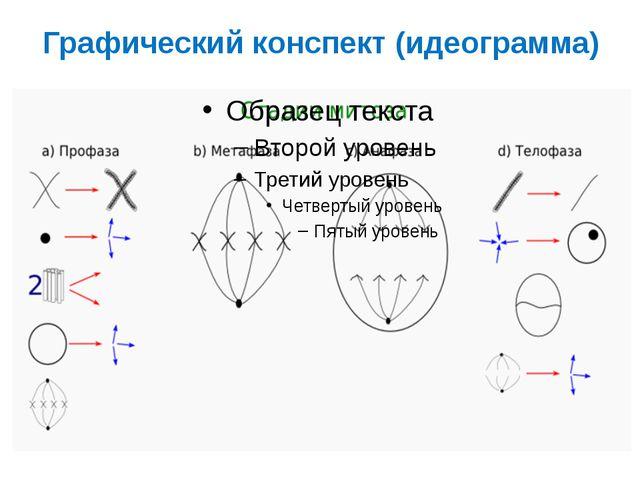 Графический конспект (идеограмма)