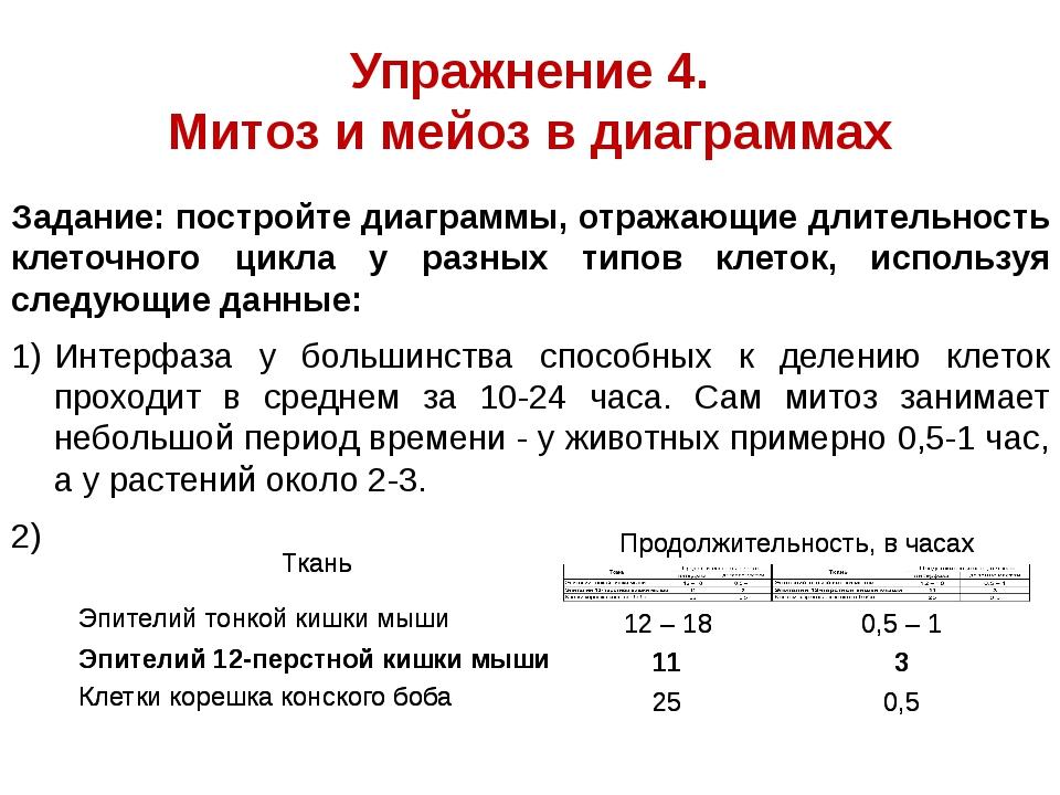 Упражнение 4. Митоз и мейоз в диаграммах Задание: постройте диаграммы, отража...